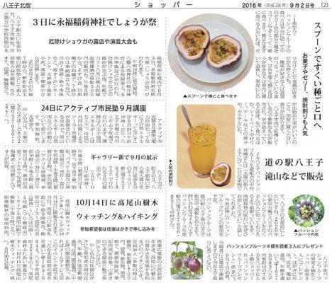 地域新聞「ショッパー」2016年9月2日号_2