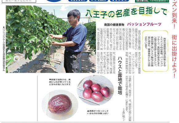 地域新聞「ショッパー」2016年9月2日号_1
